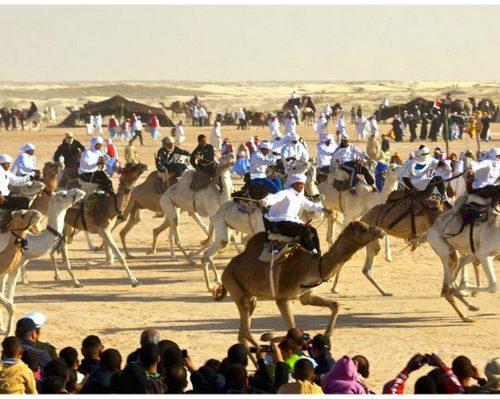 International Festival of the Sahara